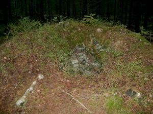 008_Vargfaella i Vedersloov - Huseby