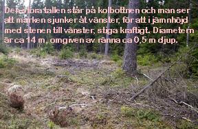 05Kolbotten-Furuby-m-text