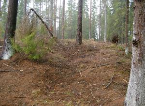12Tjardal-Vastorp2006