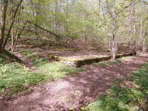 Kronan-Ladugårdsrest24x12m-PICT1139