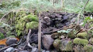 Libbhult-dammvall-20140804_124435