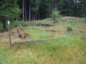 torp 20130808_094546 nära Förarpsmossen