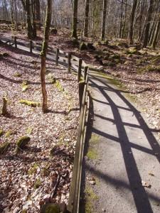 Ny väg på gamla vägen PICT1043